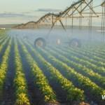 irrigationFarmField [1]