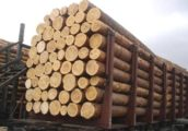 drevesina-460x321